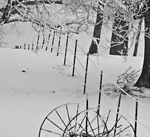 Winter Wagon Wheels by Peter Thorpe