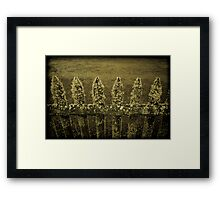 Fenced Framed Print