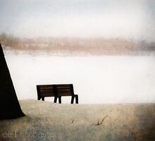 desolate by janetlee
