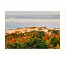 Dawn over the dunes. Art Print