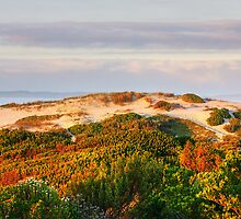 Dawn over the dunes. by Rudi Venter