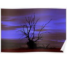 dead tree standing Poster