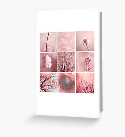 3x3 pink w Greeting Card