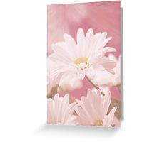 Daisies for Summer iPhone Case Greeting Card