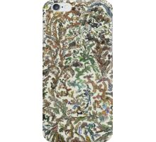 Tree of Life Poster - Animal Evolution - Colour iPhone Case/Skin
