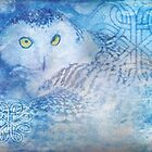 Ancient Awakening by Emma  Wertheim~Blue Butterfly Art