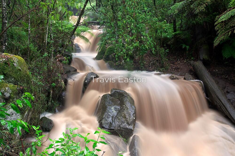 Olinda Falls after 136mm of rain by Travis Easton