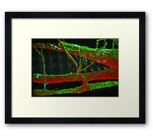 Wood Dragon Simulacra  Framed Print