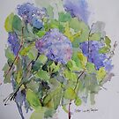 Hydrangea by Peter Lusby Taylor