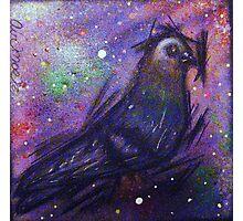 the Pigeon! Photographic Print