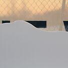 Snow at Dusk by Lynn Wiles