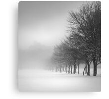 Tree Line in Snow Canvas Print