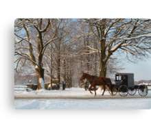 Horse and Buggy - Bird in Hand Canvas Print