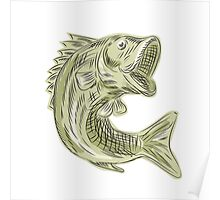 Largemouth Bass Fish Etching Poster