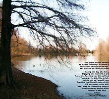 Serenity by Wayne George