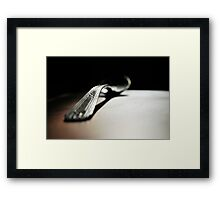 study of a silver spoon  Framed Print