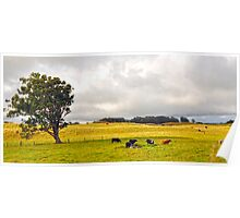 Beautiful country side Poster