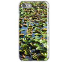 Birds Eye view of lake. iPhone Case/Skin