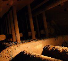 Inside the steam engine by Lee Van Hallam