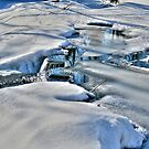 SNOW and ICE by Larry Trupp