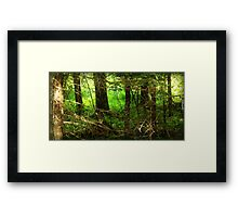 You'll need a compass Framed Print