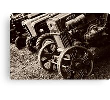 Antique Tractor Line Up Canvas Print