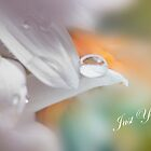Just one drop by Ann Persse