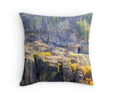 """Snow Shed"" Throw Pillow"