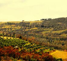 colline di Fiesole by easy197777