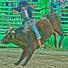 HDR Cowboy by lincolngraham