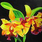 Fiery Orchids by lanadi