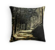 Venire per una passeggiata con me 2 Throw Pillow