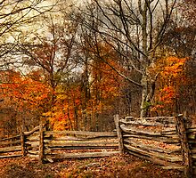 Shenandoah by bettywiley
