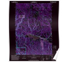 USGS Topo Map Oregon Lehman Springs 280503 1995 24000 Inverted Poster