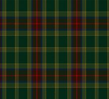 00361 Waterford County District Tartan by Detnecs2013