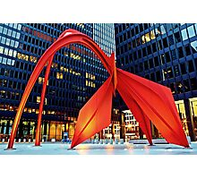 Calder's Flamingo Photographic Print