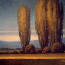 Poplars at Dusk by Rob Colvin