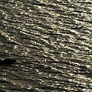 liquid sea by theblackazar