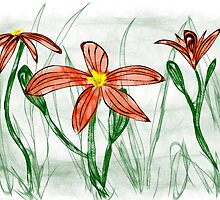 Tiger Lilies by Sandra Chung