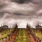 Storm on the horizon by Lynden