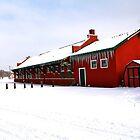 Winter Train Station by Warren Brown