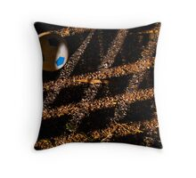 Shadows.......... Throw Pillow