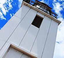 Cape Baily Lighthouse by Tamara Dandy