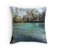 Getting Warm Throw Pillow