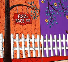822 Pace Avenue by AsEyeSee