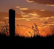 Prairie Sunset by Michael Beckett