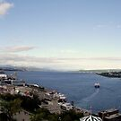 Quebec Panorama by Paul Rees-Jones