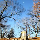 Moon and Cemetery  by Rae Breaux