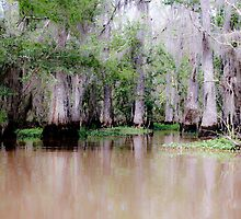 Louisiana Bayou by Denice Breaux