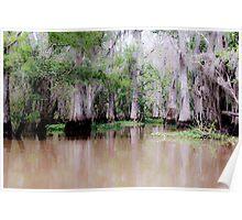 Louisiana Bayou Poster